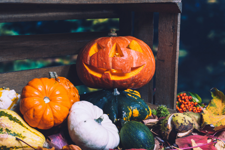 Moody scary carved halloween pumpkin with colorful leaves and chestnuts as background for thanksgiving Standard-Bild