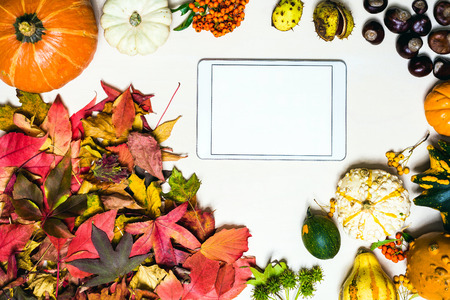 Moody autumn background picture with colorful leaves, pumpkins, chestnuts with white blank tablet with free space for message as template Imagens