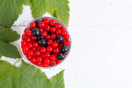 berries of black and red currant. Copy space.