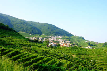 Santo Stefano village near Valdobbiadene surrounded by vinyards