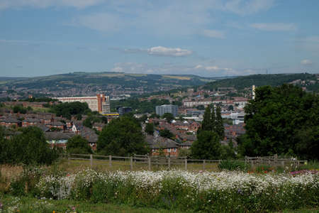 sheffield: City of Sheffield from Manor Park wildflower meadows