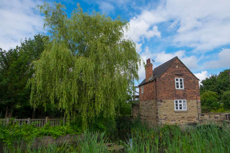 mill valley: Willow tree and mill at Rother Valley, Rotherham