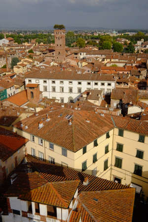 rooftops: Torre Guinigi across rooftops of Lucca, Italy Stock Photo
