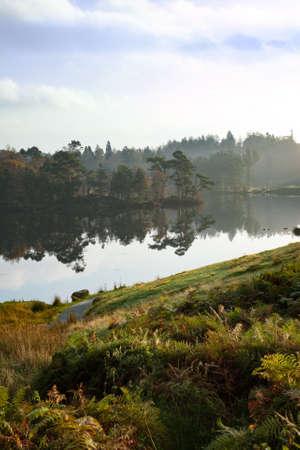 lake district: Tarn Hows in english Lake District