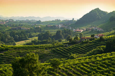 Sunset at Valdobbiadene prosecco region
