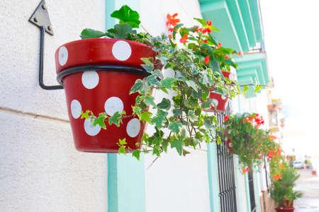 Pretty spot painted plantpots in Estepona, Spain Stok Fotoğraf