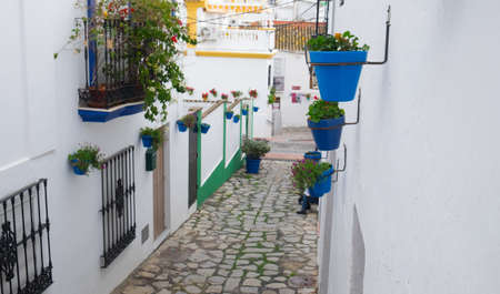 Pretty cobbled street in Estepona, Spain, with cute blue plantpots for container gardening