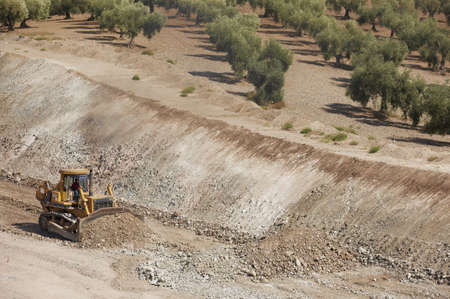Excavator unloading sand at eathmoving works in construction site with spanish olive trees landscape 版權商用圖片