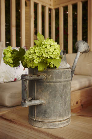 Old fashioned metal watering can with green flowers inside as a decoration element vertical photo