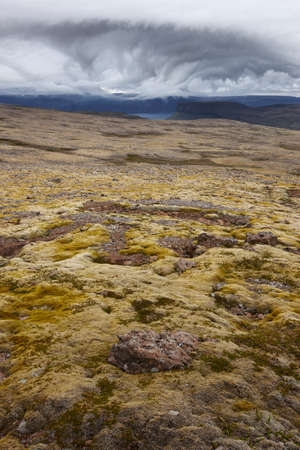 volcanic landscape: Volcanic Landscape with Moss ground and dramatic sky