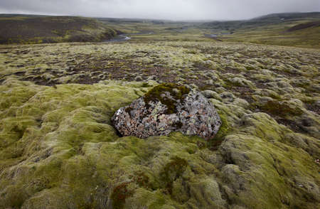 volcanic landscape: Volcanic landscape with rhyolite formations in Lakagigar, Iceland South area