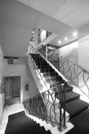 Hotel staircase with carpet  Vertical  Black and white