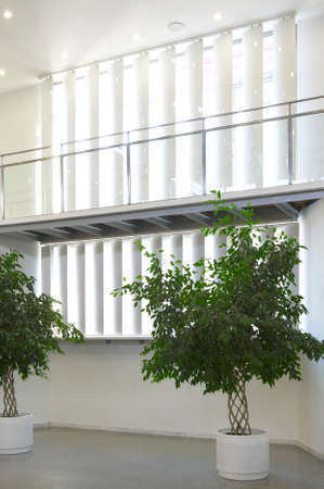 Interior corridor with plants and white light  Vertical