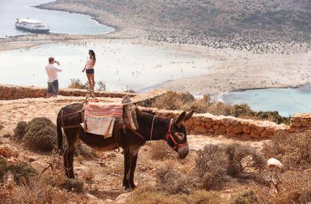 Balos beach and donkey in Crete. Mediterranean landscape. Greece. Horizontal