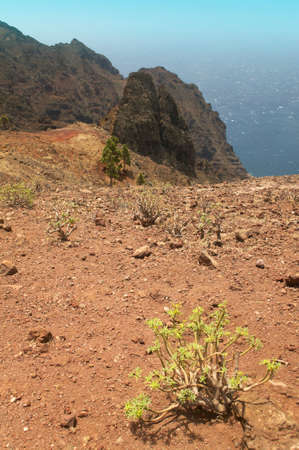 Gomera landscape with rocks and plants. Canary Islands. Spain photo