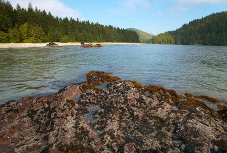 canadian pacific: Landscape in Cape Scott Park. Vancouver. British Columbia. Canada.