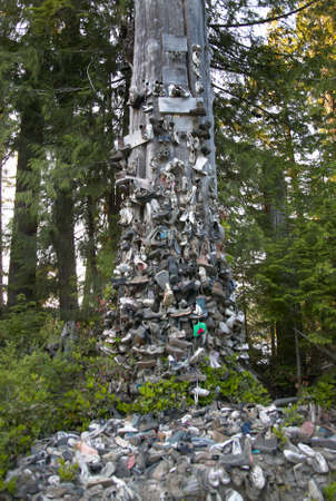 and tradition: Shoes in a tree. Tradition. Vancouver. British Columbia. Canada
