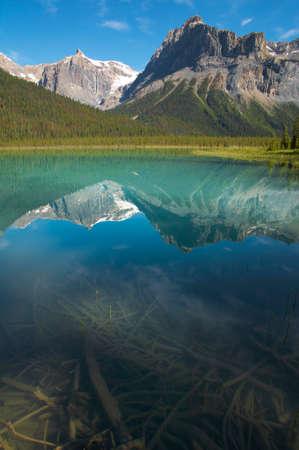 columbia: Emerald lake landscape. British Columbia. Canada. Vertical