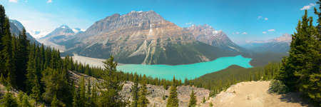 icefield: Peyto lake panoramic view. Icefield parkway. Canada. Horizontal Stock Photo