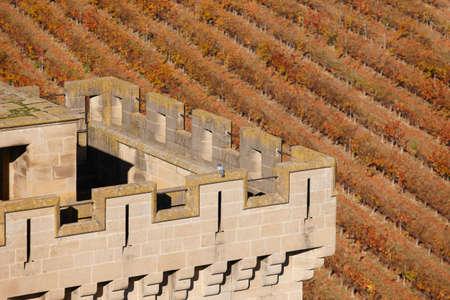 navarra: Antique castle battlement and vineyard in Olite, Navarra. Spain. Horizontal Editorial