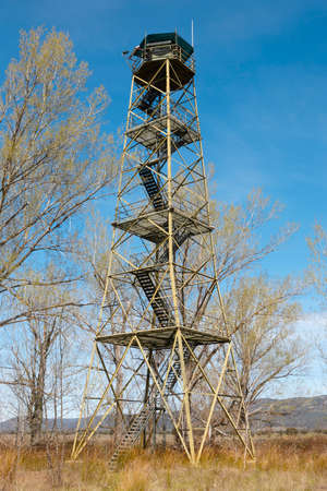 detection: Fire detection watch tower surruonded by deciuous trees in Spain. Vertical