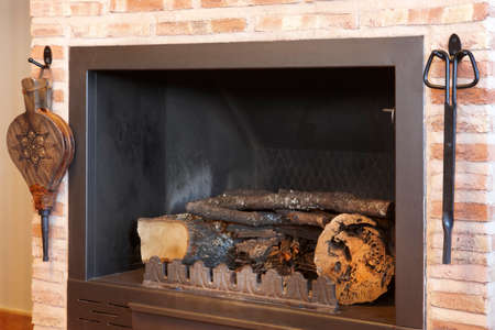 Metallic home fireplace with tools and trunks. Horizontal photo