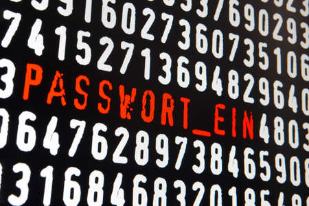 computer security: Computer screen with passwort ein text on black background. Horizontal