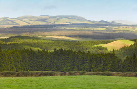 agriculture azores: Azores landscape with meadows, forests and mountains in Terceira. Portugal. Horizontal