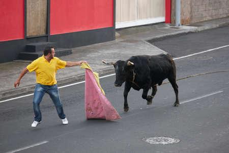 bullfighting: Traditional azores bullfighting feast in Terceira. Portugal. Touradas a corda. Horizontal Editorial