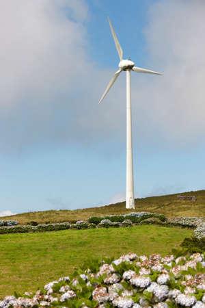 jorge: Wind park windmill in Sao Jorge island. Azores. Portugal. Vertical