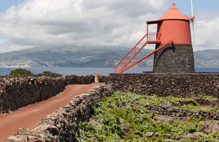 agriculture azores: Traditional vineyard plantation windmill in Pico island. Azores. Portugal. Currais. Horizontal