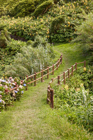 flores: Green pathway sorrounded by lush vegetation in Flores, Azores island. Portugal