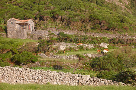 flores: Azores landscape with stone house in Flores island, Azores. Portugal. Horizontal Stock Photo