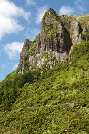 rocha: Azores rocky landscape in Flores island. Rocha dos Bordoes. Portugal. Vertical