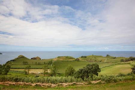 flores: Azores rural coastline green landscape in Flores island. Portugal. Horizontal