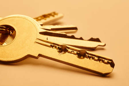 keyring: Keyring with keys in golden tone over an empty background. Horizontal