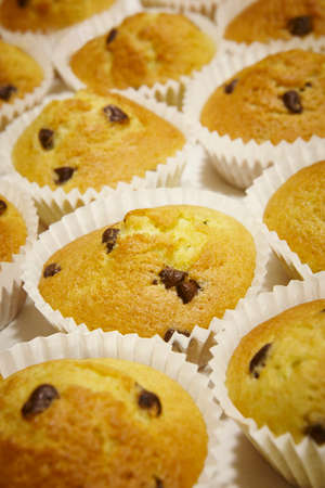 mini oven: Cupcakes with chocolate in vertical format. Background