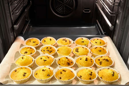 mini oven: Cupcakes with chocolate inside an oven with fan. Horizontal