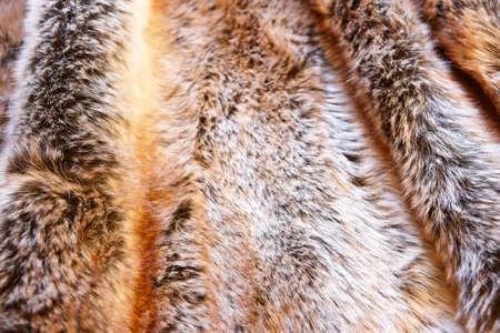 furry stuff: Natural fox furry background. Animal game. Horizontal