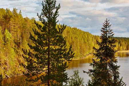 Finland forest and lake at Pieni Karhunkierros trail. Autumn season Stock Photo