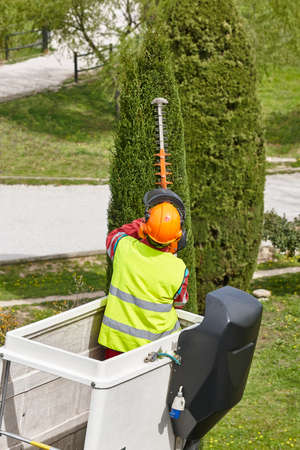 Equipped worker pruning a tree on a crane. Gardening works
