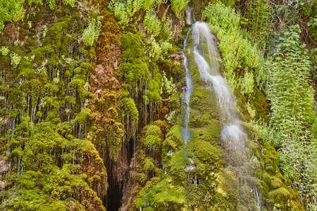 Green wet mossy foliage and water stream. Guadalajara, Spain