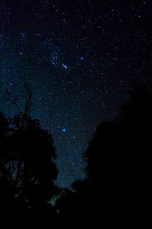 star galaxy at night