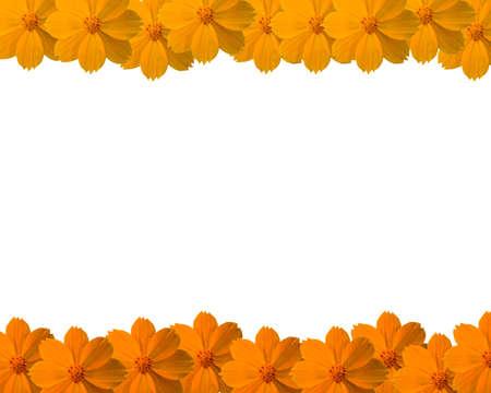 Flower frame photo