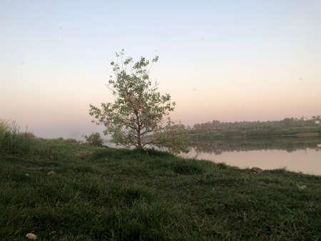 land escape , River bank, river