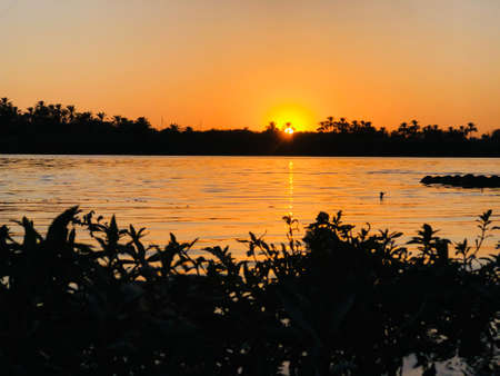 Sunset on the shore of the river with trees orchards