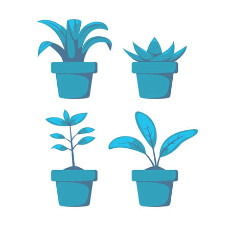Set home or indoor plant on pot vector object element decoration for illustration project in blue scheme shading color Ilustracja