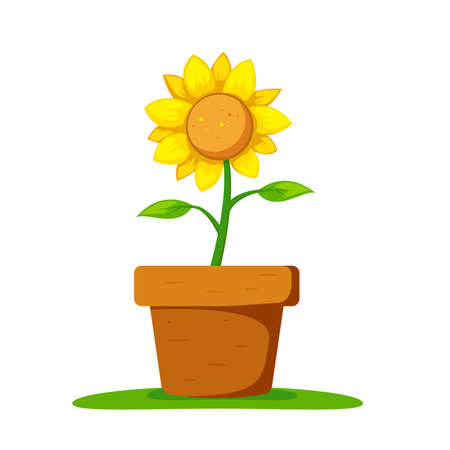 Sunflower in pot on the ground vector detail illustration Foto de archivo - 138241709