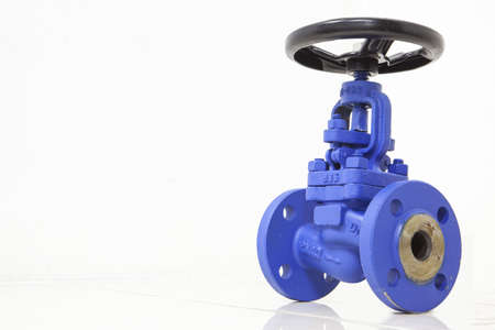 Globe Valve bellow seal flange end Stockfoto