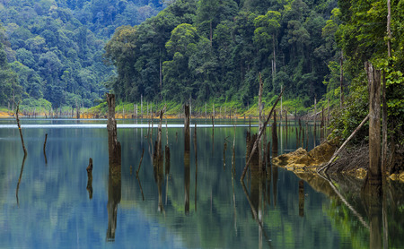 Tropical rainforest at Kenyir Lake in Terengganu, Malaysia. Kenyir Lake also known as Tasik Kenyir, it is the largest man-made lake in South East Asia with an area of 260,000 hectares.